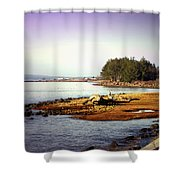 Low Tide Revelations Shower Curtain