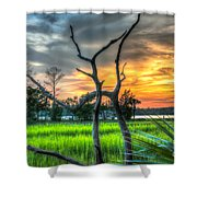 Lowcountry Charm Shower Curtain
