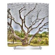 Lowcountry Marsh On Sea Island Shower Curtain