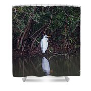 Lowcountry Pond Life Shower Curtain