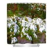 Lowcountry Snow Shower Curtain