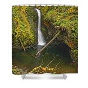 Lower Butte Creek Falls Shower Curtain