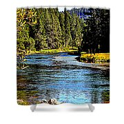 Lower Truckee River Shower Curtain