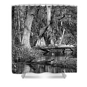 Loxahatchee Black And White Shower Curtain