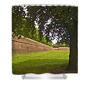 Lucca Walls Shower Curtain