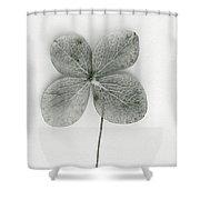 Luck Shower Curtain