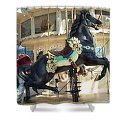 Lucky Black Pony - Syracuse Ptc No 18 Shower Curtain
