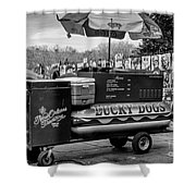 Lucky Dogs In Jackson Square Nola Bw Shower Curtain