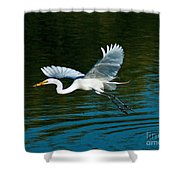 Lucky Egret Shower Curtain