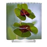 Lucky Lovers Shower Curtain