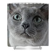 Lucy Grace Shower Curtain