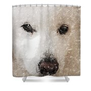 Lucy Light Color Pencil Shower Curtain