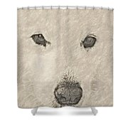 Lucy Pastel Highlight Shower Curtain