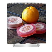 Luffa Red And Pink Soap Shower Curtain