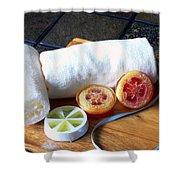 Luffa Soap Shower Curtain