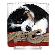 Lullaby Berner And Bunny Shower Curtain by Liane Weyers