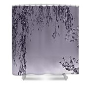 Lullaby Moments II Shower Curtain