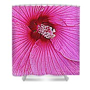 Luminescent In Pink Shower Curtain