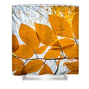 Luminescent Leaves Shower Curtain
