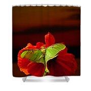 Luna Moth Poppy Evening Sky Shower Curtain