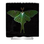 Lunar Moth Shower Curtain