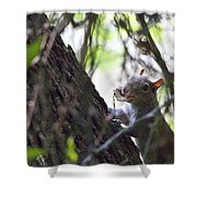 Lunch With A Friend Shower Curtain