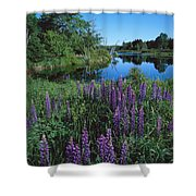 Lupin And Lake-v Shower Curtain