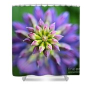 Lupine - Top Down Shower Curtain