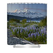 Lupine And Mount Elias Shower Curtain