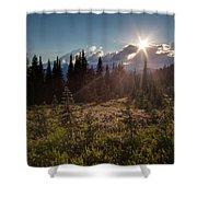 Lupine Field Sunstar Shower Curtain
