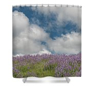 Lupine Field Under Clouds Shower Curtain