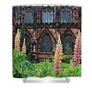 Lupines At Chester Cathedral 6805 Shower Curtain