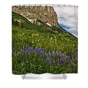 Lupines On The Hillside Shower Curtain