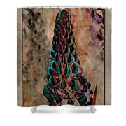 Lupins 10 Shower Curtain