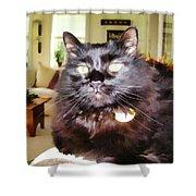 Lura Leigh Kitty Shower Curtain