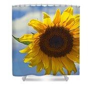 Lus Na Greine - Sunflower On Blue Sky Shower Curtain