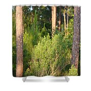 Lush Forest Shower Curtain