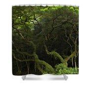 Lush Green Shower Curtain