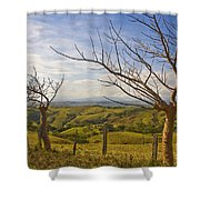 Lush Land Leafless Trees 2 Shower Curtain
