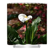 Lush Lily Shower Curtain