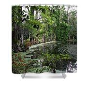 Lush Swamp Vegetation Shower Curtain