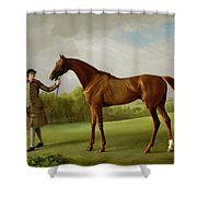 Lustre Held By A Groom Shower Curtain