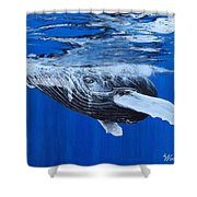 Lusus Naturae Shower Curtain