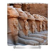 Luxor Temple 3 Shower Curtain