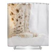 Lynx Feet Shower Curtain