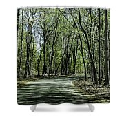 M119 Tunnel Of Trees Michigan Shower Curtain