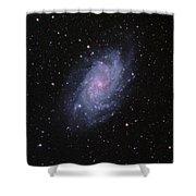 M33--the Triangulum Galaxy Shower Curtain