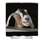 Maa-aaa Shower Curtain