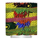 Maasai Beadwork Shower Curtain