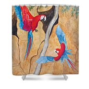 Macaw Claylick Shower Curtain